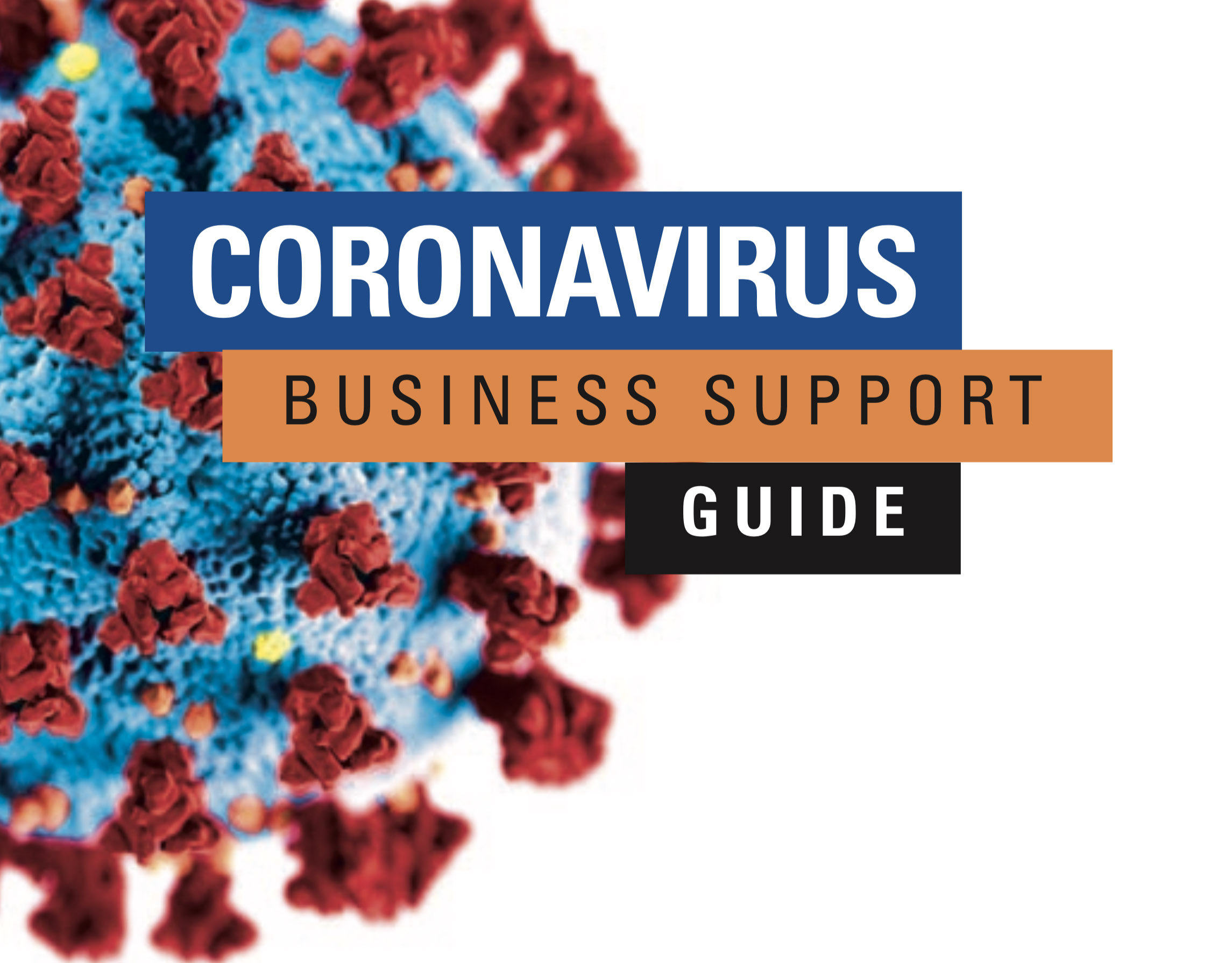 ADPL - Coronavirus Business Support Guide